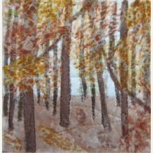 Autumn Woodland 1
