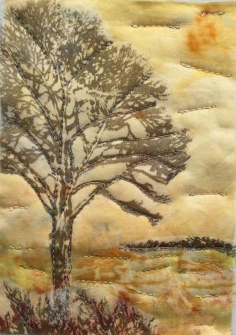 Trees on Orange 5 (10cm x 15cm - mounted 12cm x 18cm)